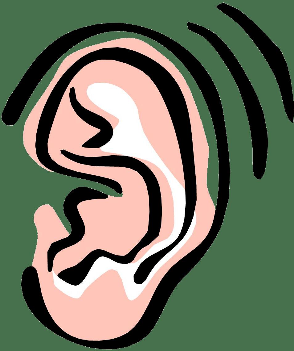 Лечение дисфункции височно-нижнечелюстного сустава помогает при шуме в ушах и боли в ушах блог изображен на изображении